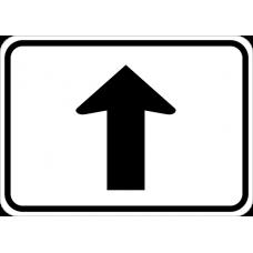 Straight Arrow Auxiliary